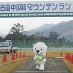 地元田辺市中辺路町で世界遺産熊野古道をトレイルランしてきます