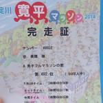 淀川寛平マラソン2014に参加してきました