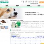 大阪芸術大学のインターンだった渡辺さんと作ったサイト