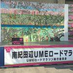 南紀田辺UMEロードマラソン完走してきました。