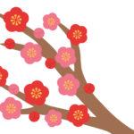 東風吹かば匂いおこせよ梅の花~令和元年