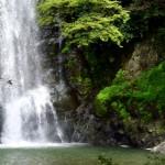 注目されている「オープンデータ」に取り組む鯖江市の話